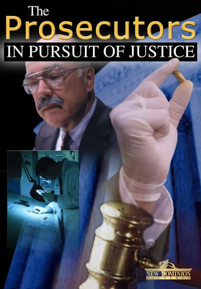 The Prosecutors: In Pursuit of Justice Free TV Series Poster Image