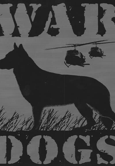Watch War Dogs Streaming Online