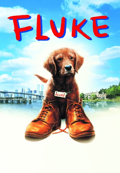 How To Get A Free Car >> Watch Fluke (1995) Full Movie Free Streaming Online | Tubi